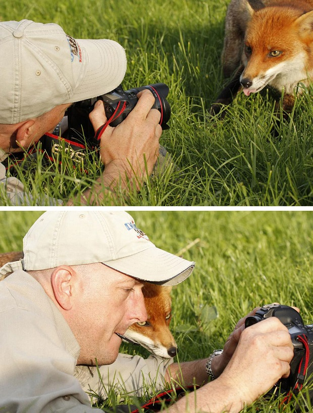 15a-Animals-That-Want-To-Be-Photographers