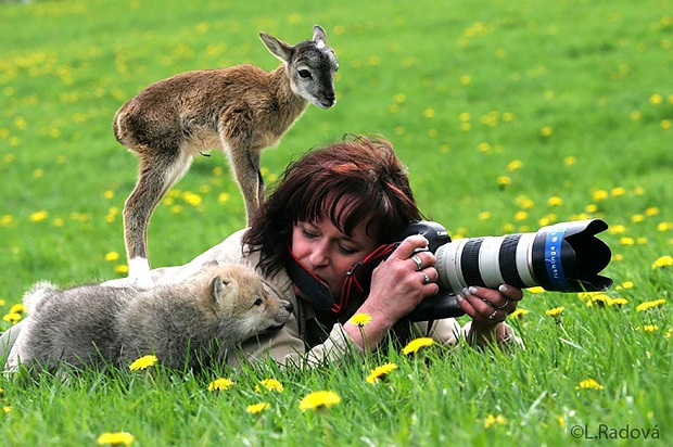 15b-Animals-That-Want-To-Be-Photographers